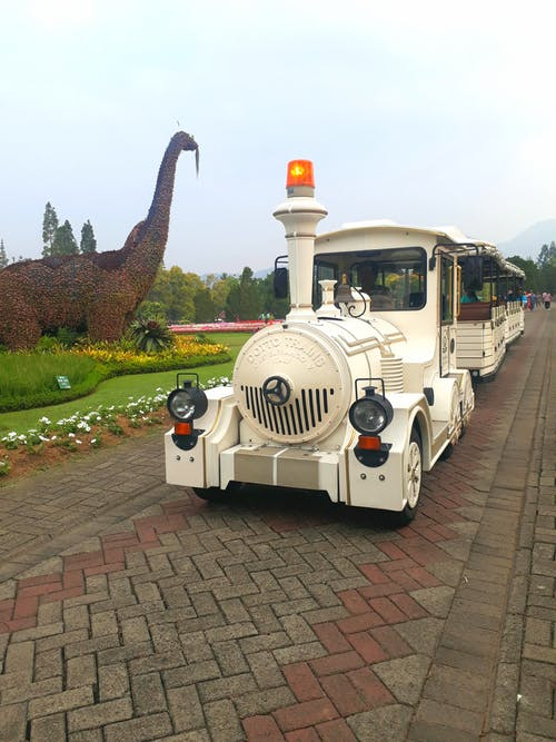 Foto profissional grátis de automóvel, dinossauro, flor, parque