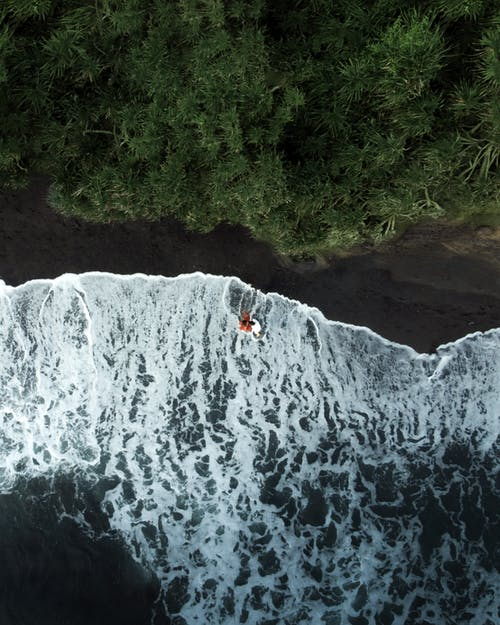 Top view of foamy ocean water washing coast with woods with green trees