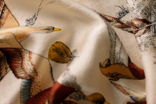 Kostnadsfri bild av bläckfisk bläck, dekoration, detaljer