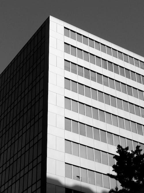 Facade of contemporary building in daytime