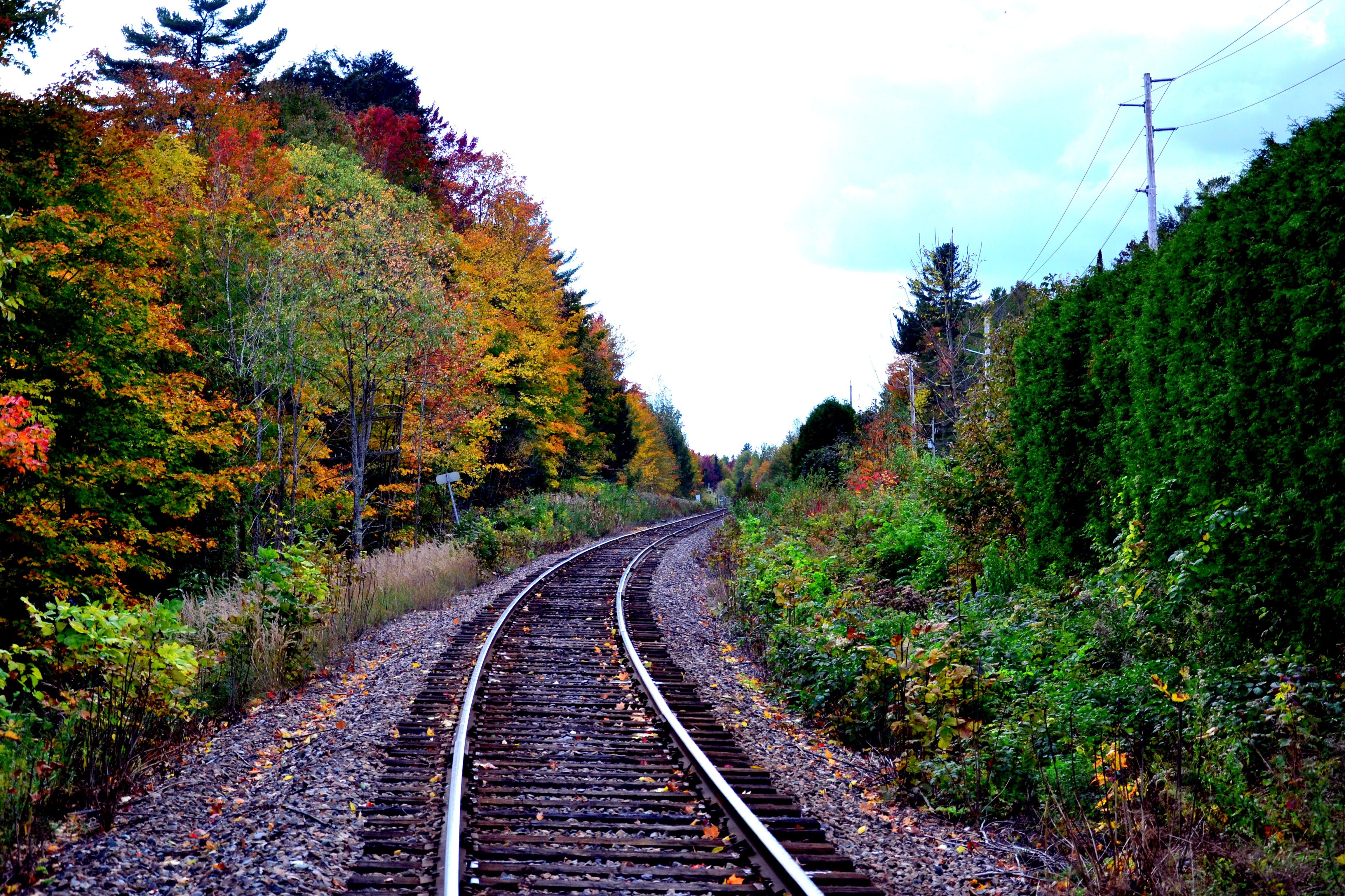 Free stock photo of autumn colours, canada, countryside, fall