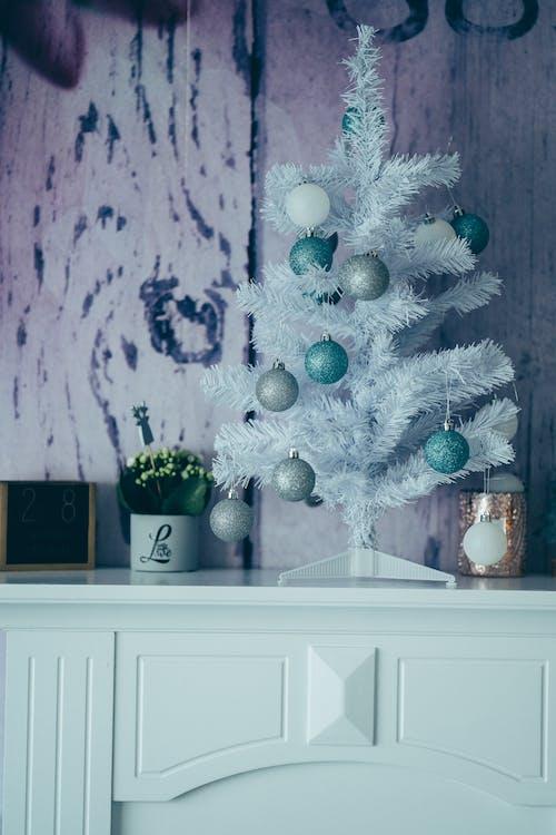 インドア, クリスマス, クリスマスシーズンの無料の写真素材