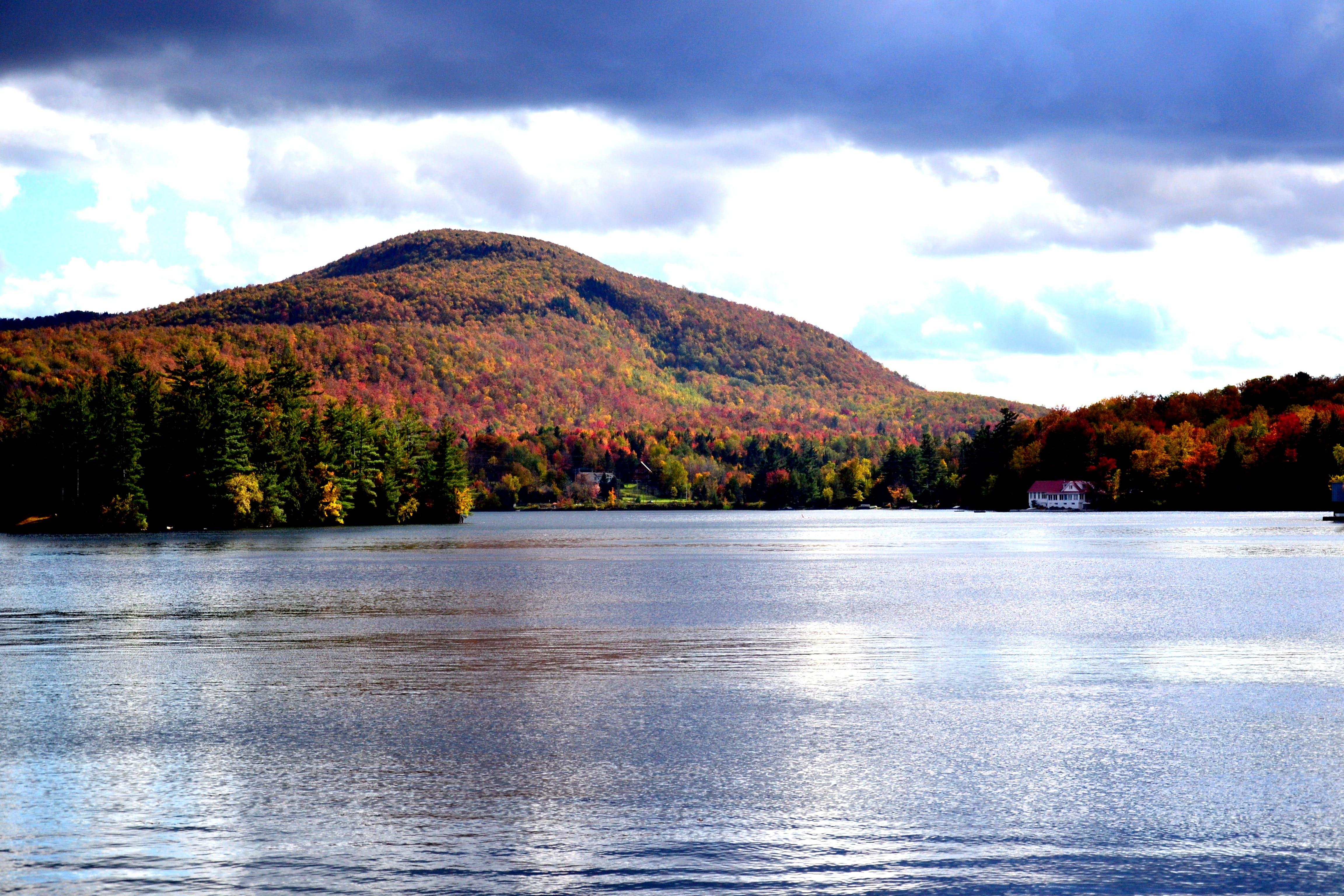 Free stock photo of autumn, canada, fall, lake