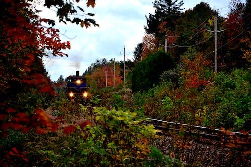 Free stock photo of canada, quebec, train