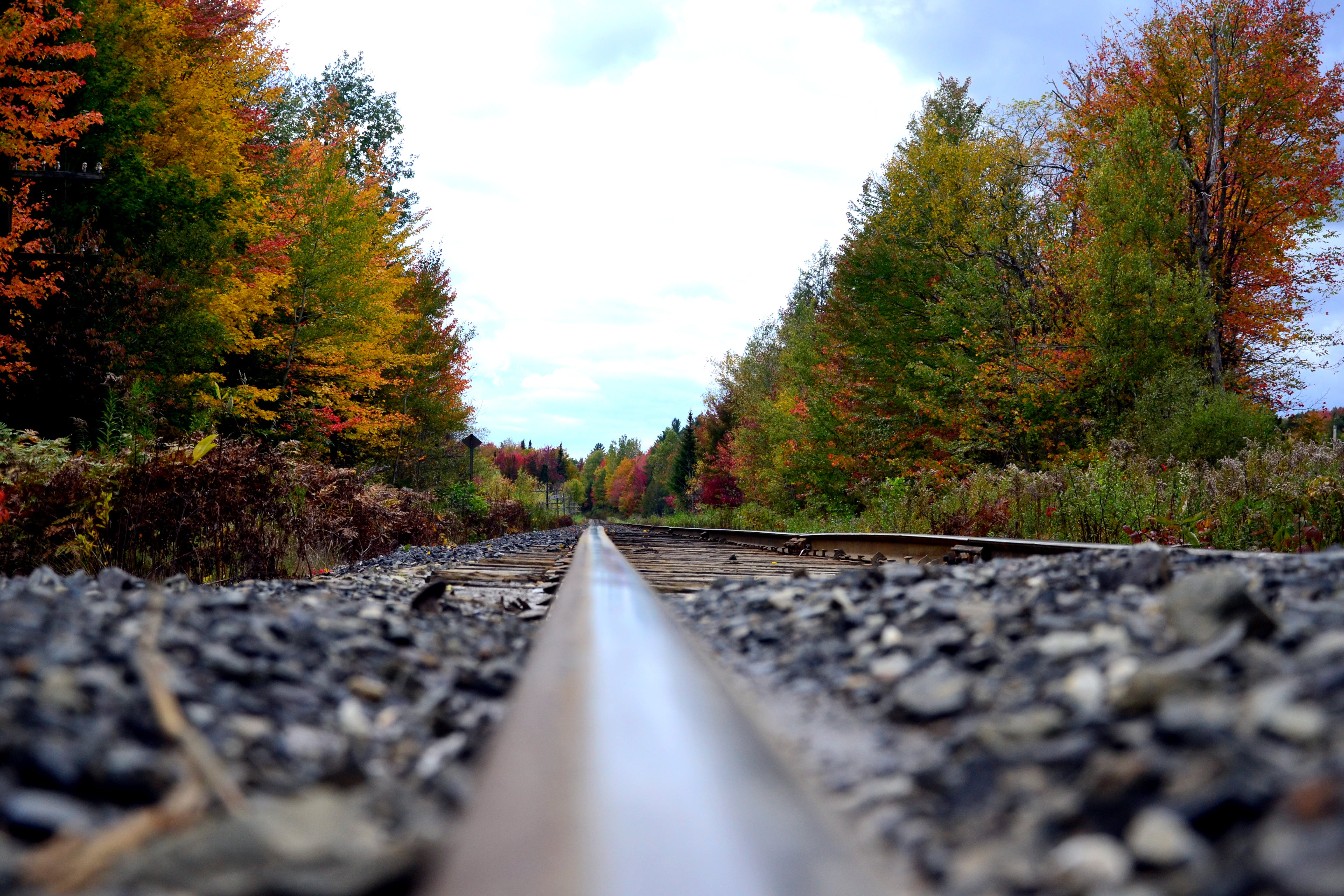 Black Steel Train Rail With Pebbles and Trees
