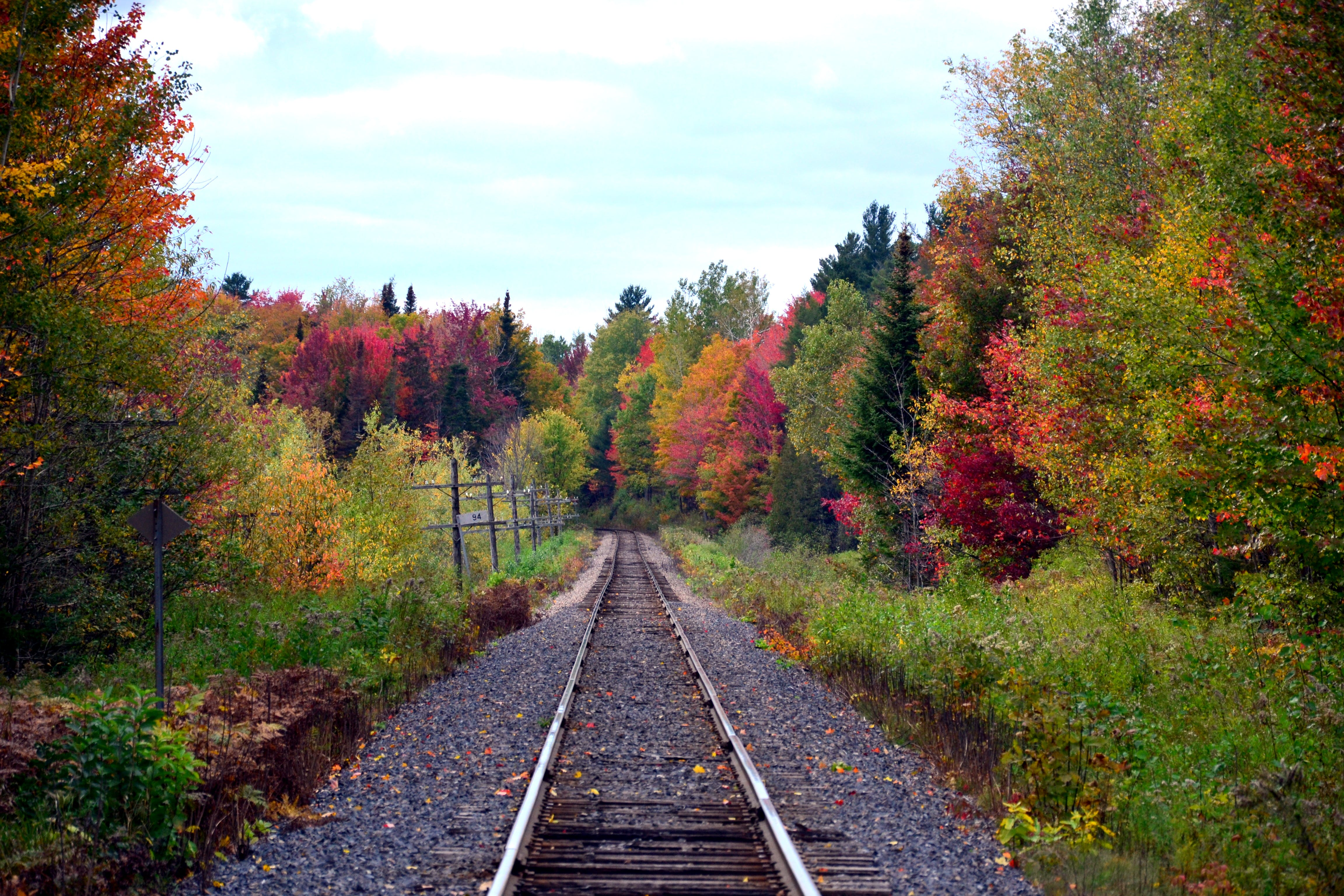 Free stock photo of canada, forest, quebec, railroad