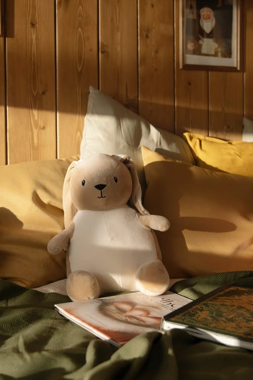 A Plush Toy on Bed