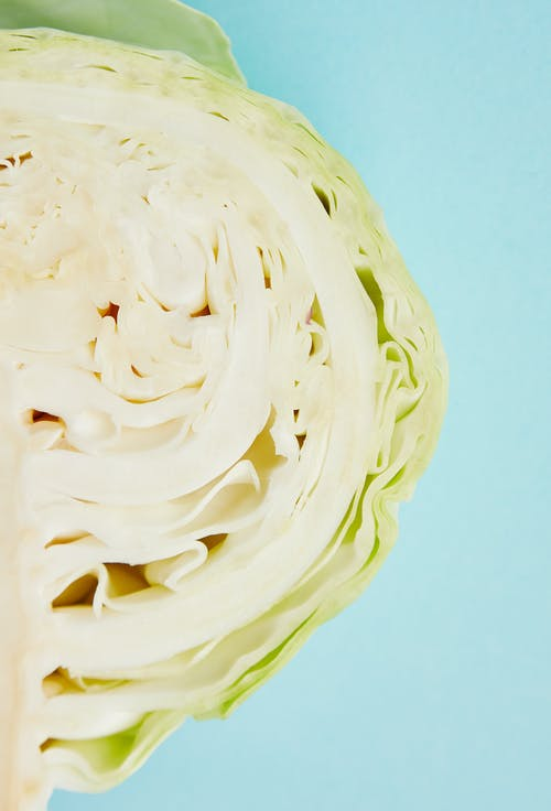 Top view cross section of fresh healthy white cabbage placed on blue background