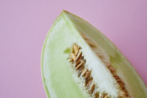 Piece of fresh melon with seeds