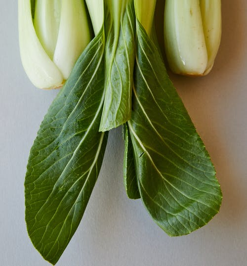 Top view of verdant fresh leaves of pok choi with thin veins placed on gray background