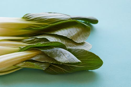Top view of fresh pok choi with ripe verdant leaves on thick stems on blue background