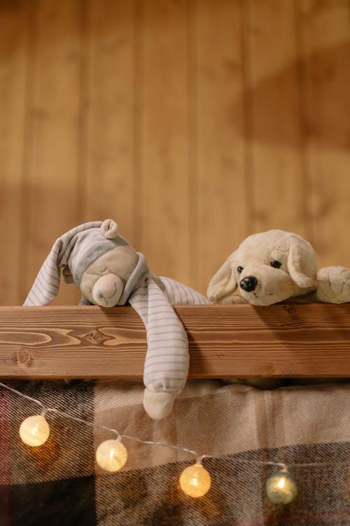 Fotos de stock gratuitas de adentro, adorable, animal de peluche