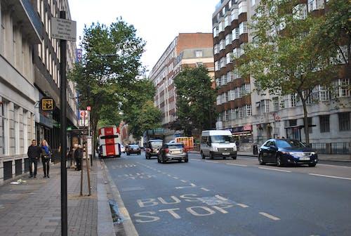 Základová fotografie zdarma na téma auta, autobusy, Londýn