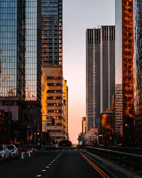 Voitures Sur Route Près Des Immeubles De Grande Hauteur Pendant La Nuit