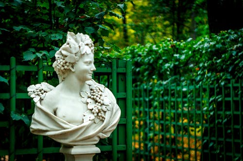 Bust Statue of Woman with Grapes