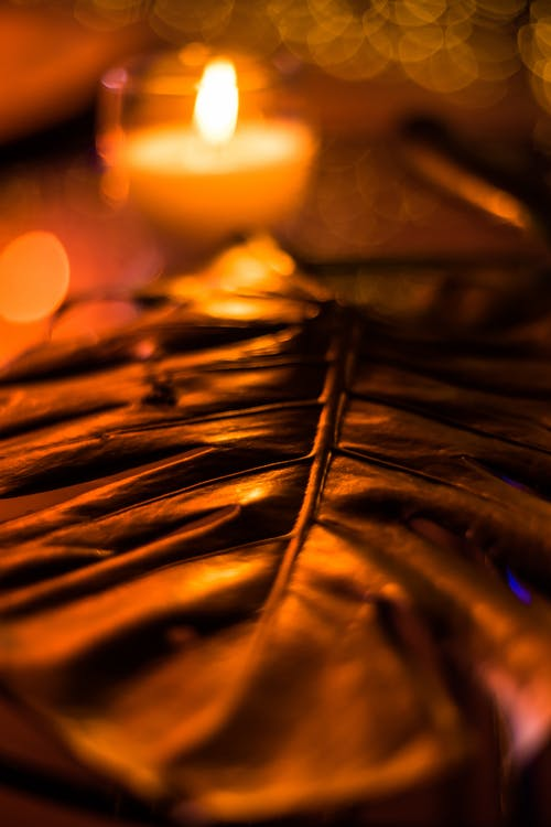 Close-Up Photo of a Leaf Near a Lighted Candle