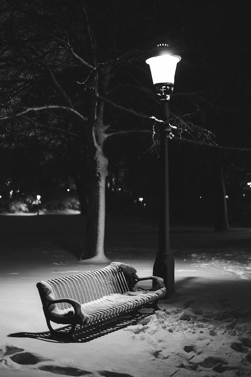 Základová fotografie zdarma na téma černý a bílý, jednobarevný, lavička