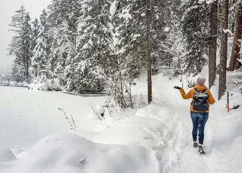 Anonymous backpacker exploring winter forest from pathway