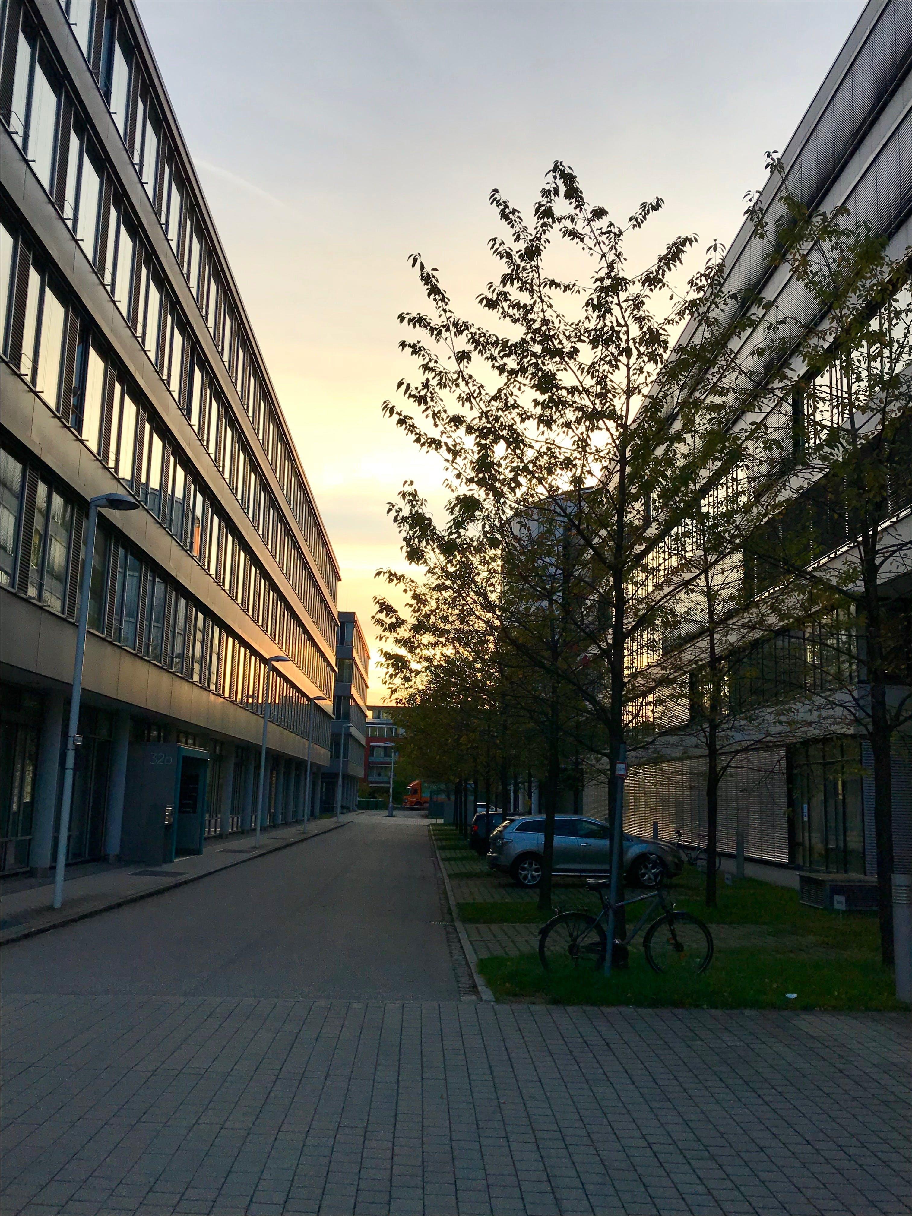 Free stock photo of street, building, sunrise, light reflections