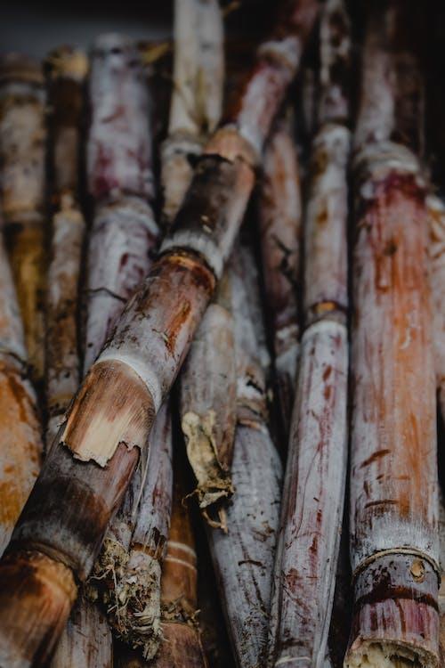Brązowe I Białe Patyczki Drewniane