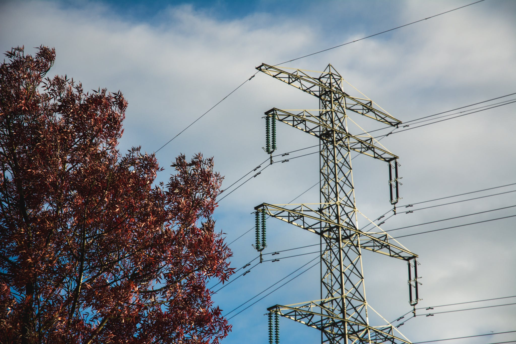 Free stock photo of colorful, electricity, power pylon, tree