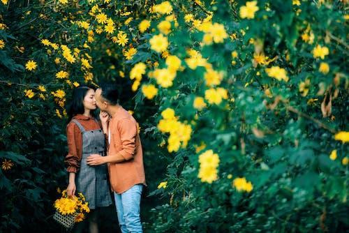Gratis stockfoto met affectie, afspraakje, Aziatisch stel