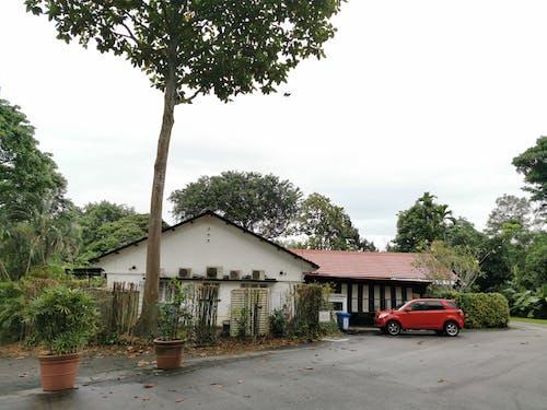 Free stock photo of cars, lorong sesuai, private houses