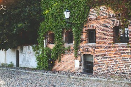 Fotos de stock gratuitas de arquitectura, calle, ciudad, correr