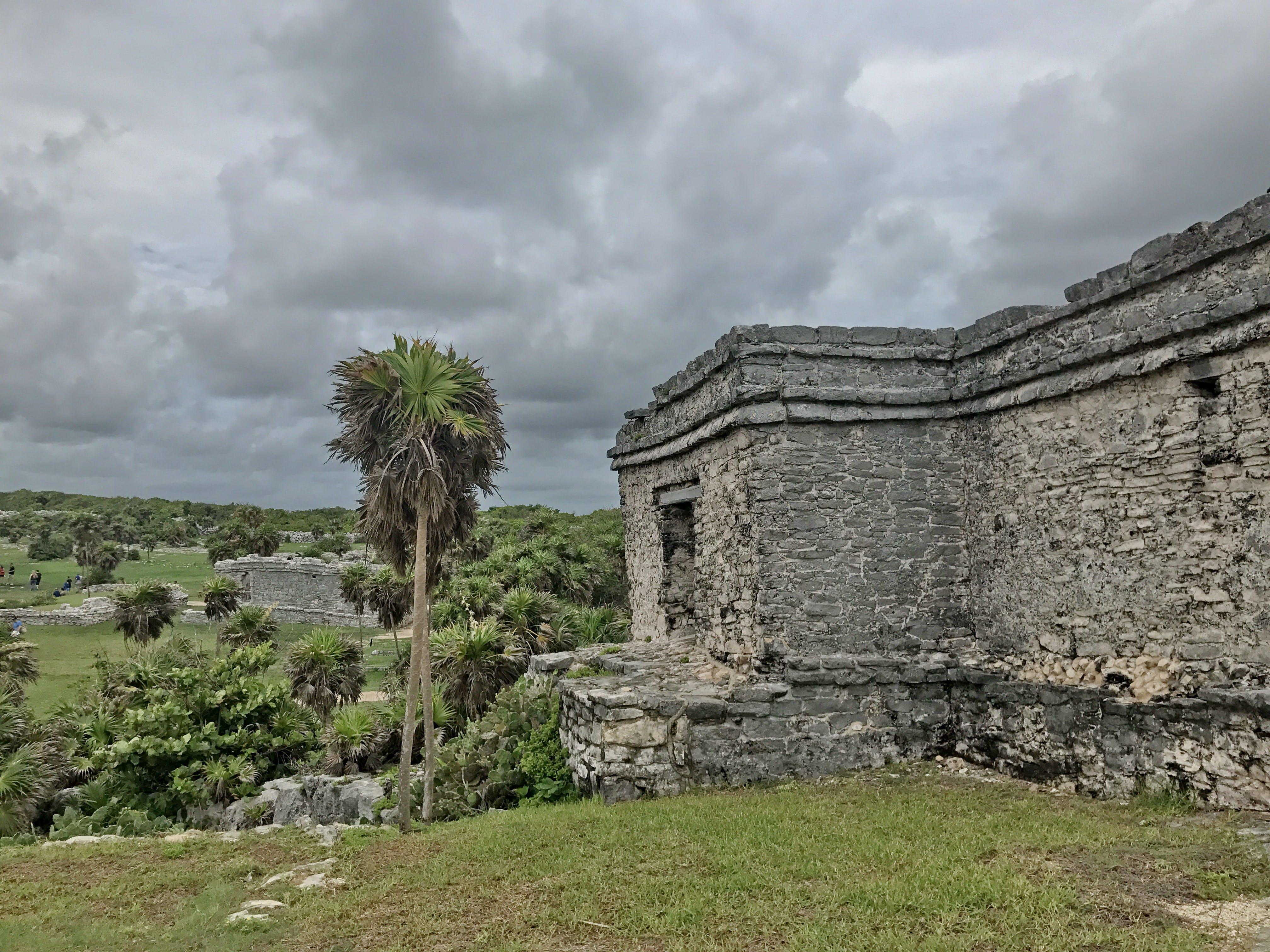 Free stock photo of ruins, palm tree, El Castillo, Mayan