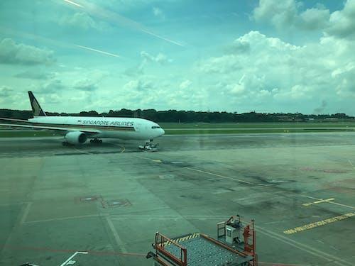 Free stock photo of airport, plane, singapore