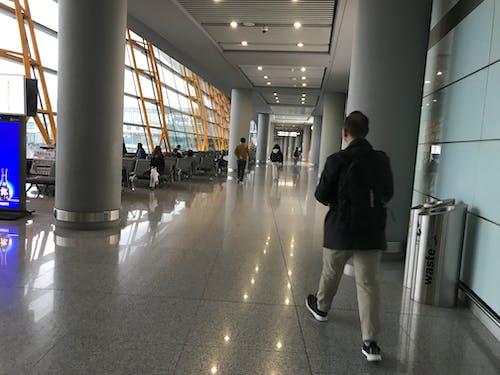 Free stock photo of airport, Beijing, china