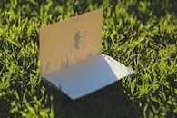 sunny, notebook, grass