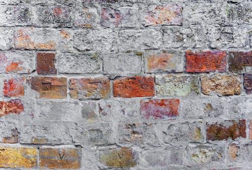Безкоштовне стокове фото на тему «бетон, брудний, вираз»