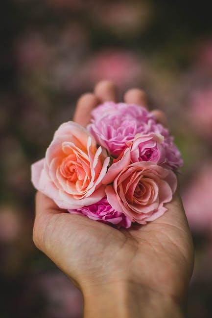 New free stock photo of love, hand, flowers