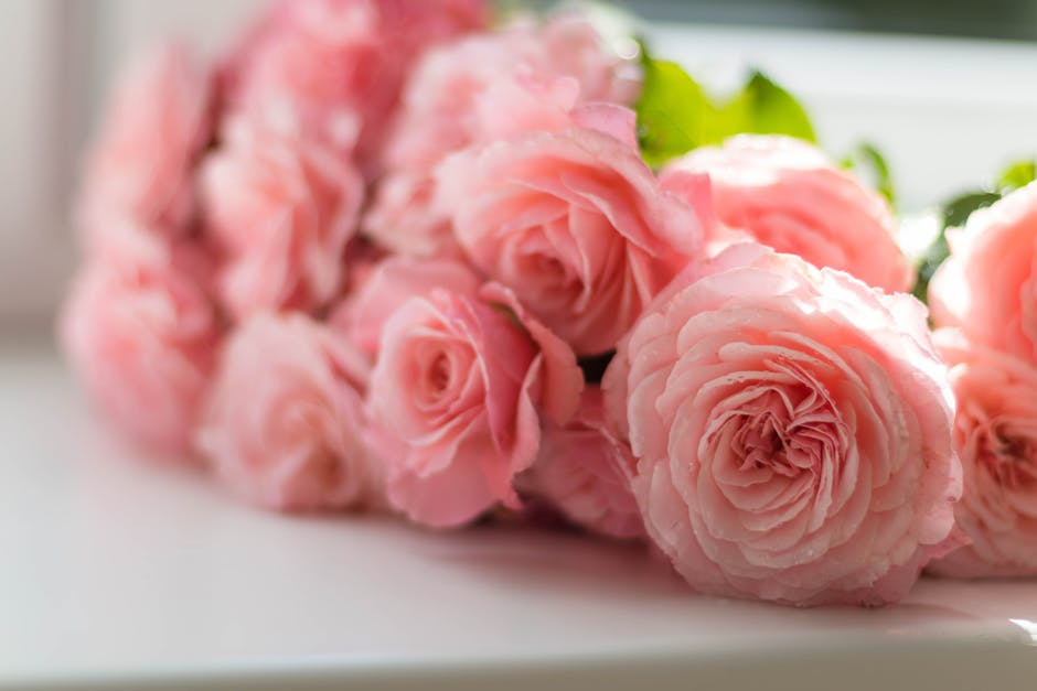 7 Amazing Long Lasting Cut Flowers Best for Sending Internationally and How to Handle Them