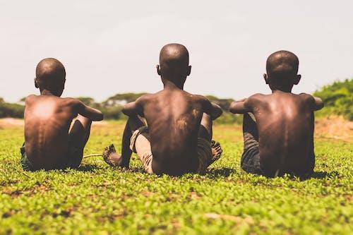 3 Men Sitting on Green Grass Field