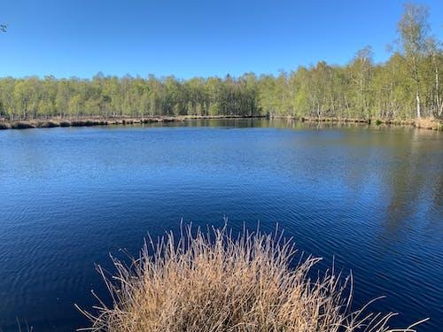 Free stock photo of beauty nature, blue lake, blue water
