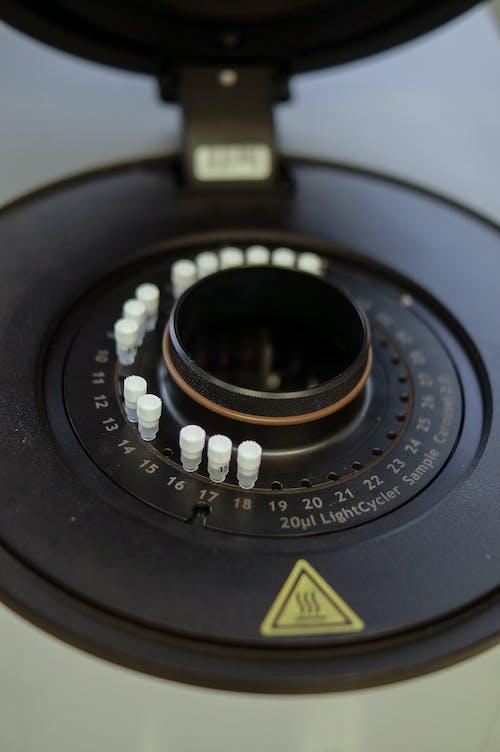 Kostenloses Stock Foto zu analogon, antik, antiquität, biotechnologie