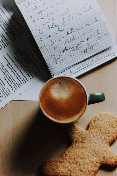 Top view composition of aromatic fresh cappuccino and sweet gingerbread cookie placed on table near notepad with handwritten notes