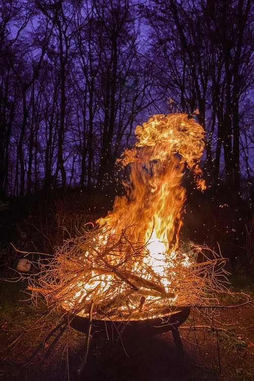 Fire in the Woods during Night Time