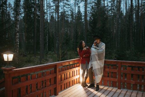 Imagine de stoc gratuită din arbori, balcon, băut