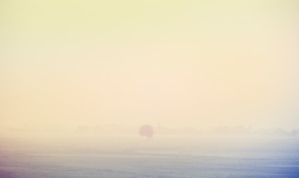 Free stock photo of nature, space, countryside, fog