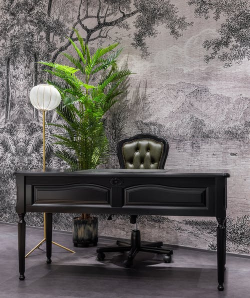 Vintage room with black table and stool near potted plant and wall near floor lamp