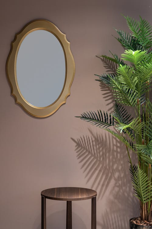 Interior of room with round table near green plant in pot and mirror on beige wall