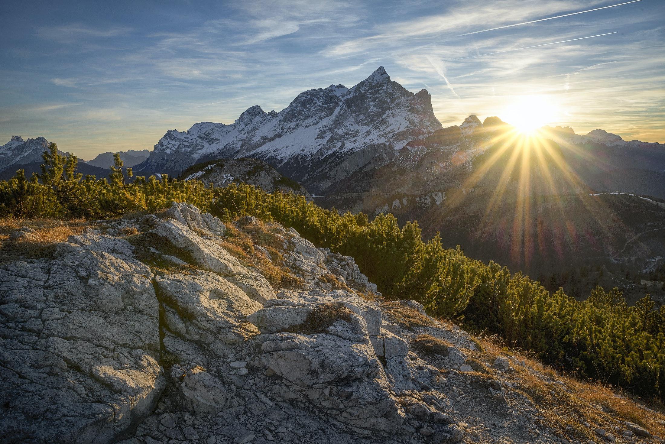 1000+ great bright photos · pexels · free stock photos
