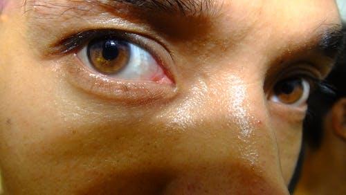 Free stock photo of eye, nepal photography, royalgcorps