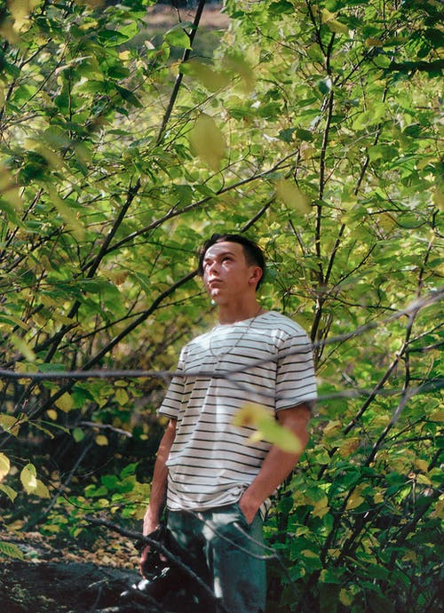 Man in White and Black Striped Crew Neck T-shirt Standing Under Green Tree