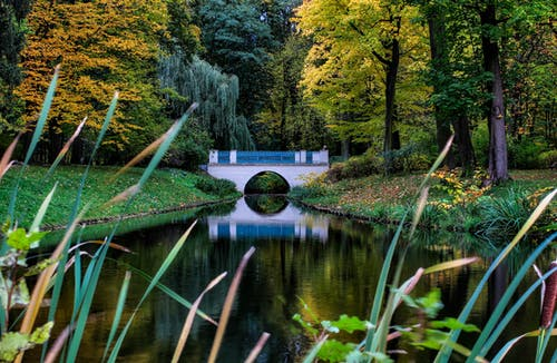 Free stock photo of city park, warsaw