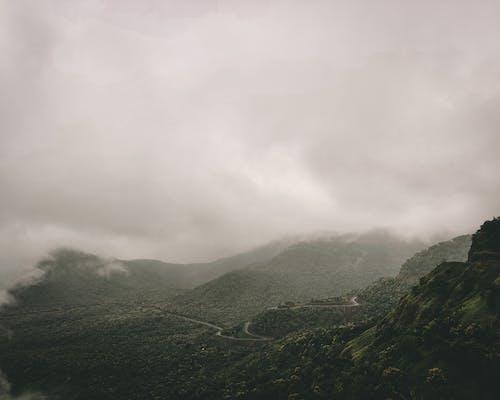 ミスト, 丘, 光の無料の写真素材