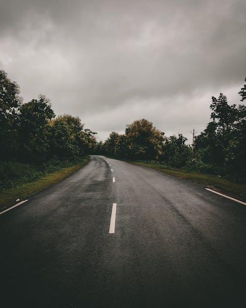 アスファルト, ガイダンス, ドライブの無料の写真素材